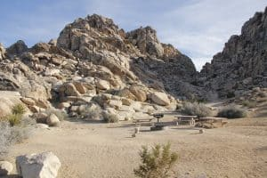 Sheep Pass Campground in Joshua Tree National Park